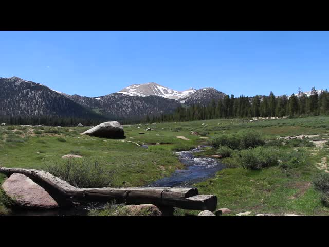 098 Video of the creek and log bridge on the Trail Pass Trail as it crosses Horseshoe Meadows