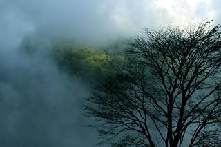 Ponmudi, Trivandrum