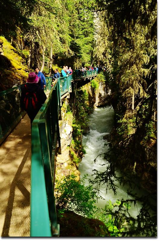 Johnston Canyon Trail (4)