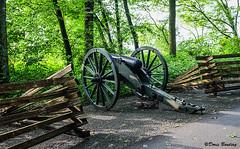 Stone's River National Battlefield, TN