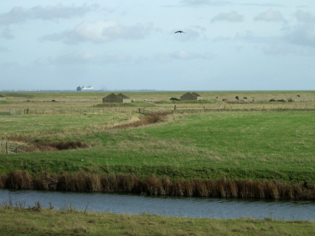 St Mary's Marshes, Kent