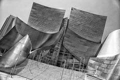 Walt Disney Concert Hall in Los Angeles, USA