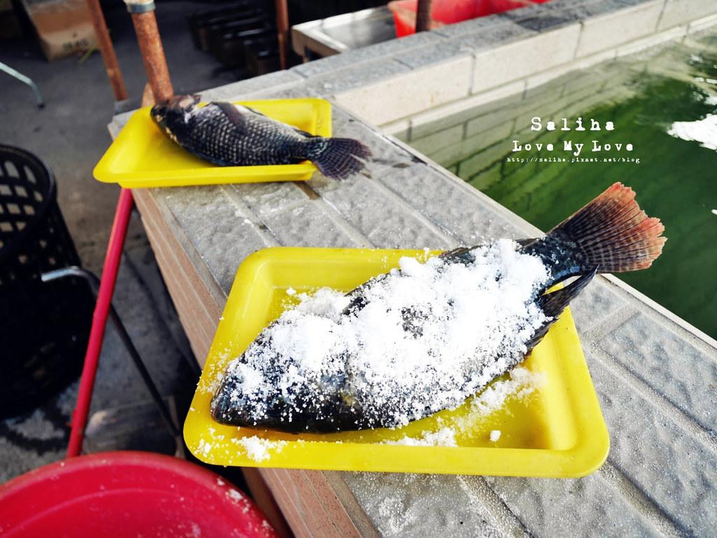 台中沙鹿區夜景餐廳推薦蠔膽你來露天燒烤吃到飽 (31)