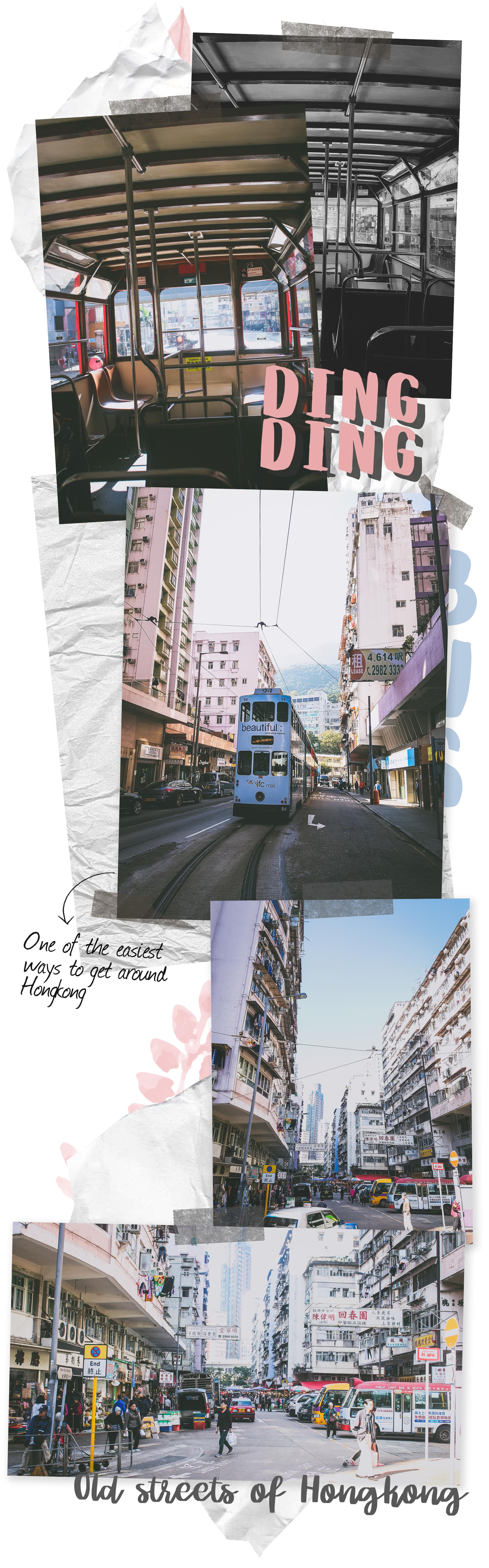Hong Kong Travel Blog_Singapore_Travel
