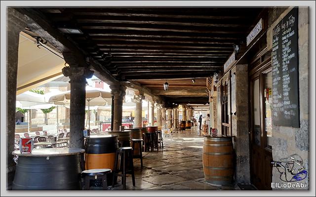 Museo del Vino Pagos del Rey y visita a Toro (20)