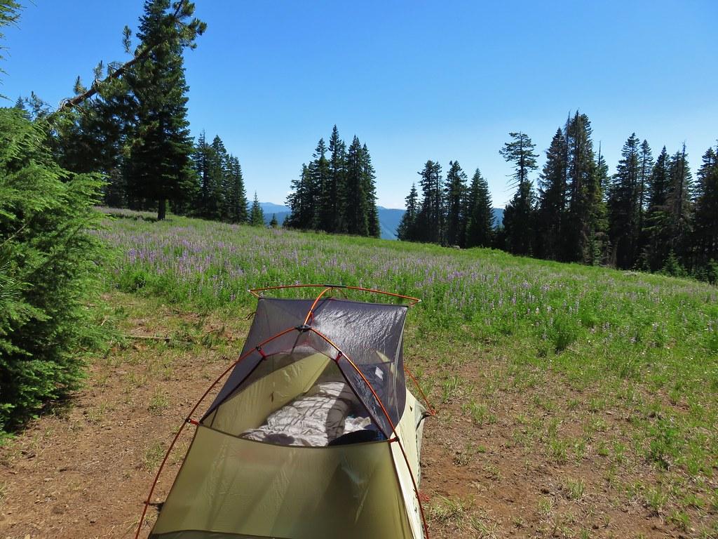 Camp site along the Grasshopper Trail