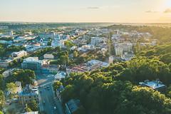Green city | Kaunas Aerial