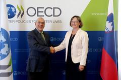 Mateja Vranicar Erman, Minister of Finance of Slovenia at the OECD