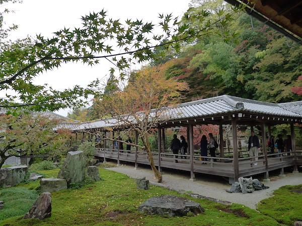 215-Kyoto