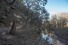 Leon Creek - O.P. Schnabel Park - San Antonio - Texas - 29 January 2017