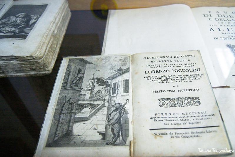 Книги в витрине музея