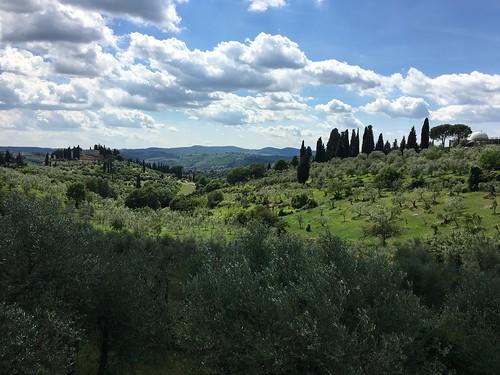 Florence IMG_4669