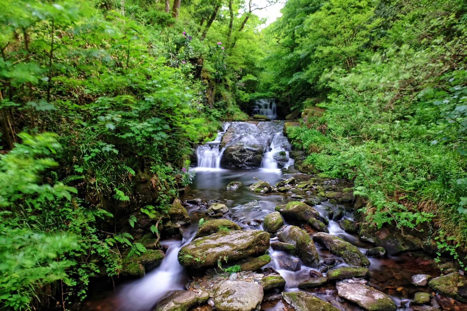 Watersmeet House |Devon - England UK