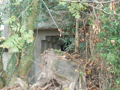 Bunker(28)
