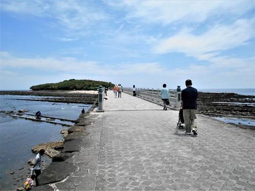 jp-aoshima-ville-île (1)