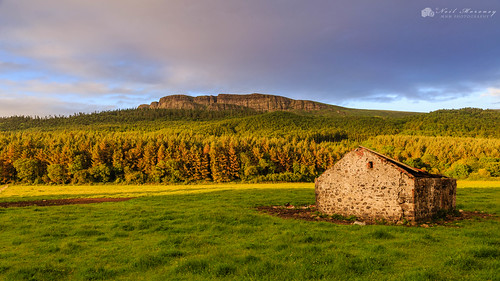 binevenagh binevenaghmountain benevenagh benevenaghmountain goldenhour sunset sunlight sunsetting sunlit sidelight oldcowshed building warmlight evening clouds cloudysky cloudy trees forestry derelictbuilding dereliction myroe swannsbridge limavdy northernireland ulster agriculture canon canon5dmkiii canonef24105mmf4lisusm