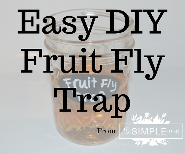 Easy DIY Fruit Fly Trap from The SIMPLE Moms