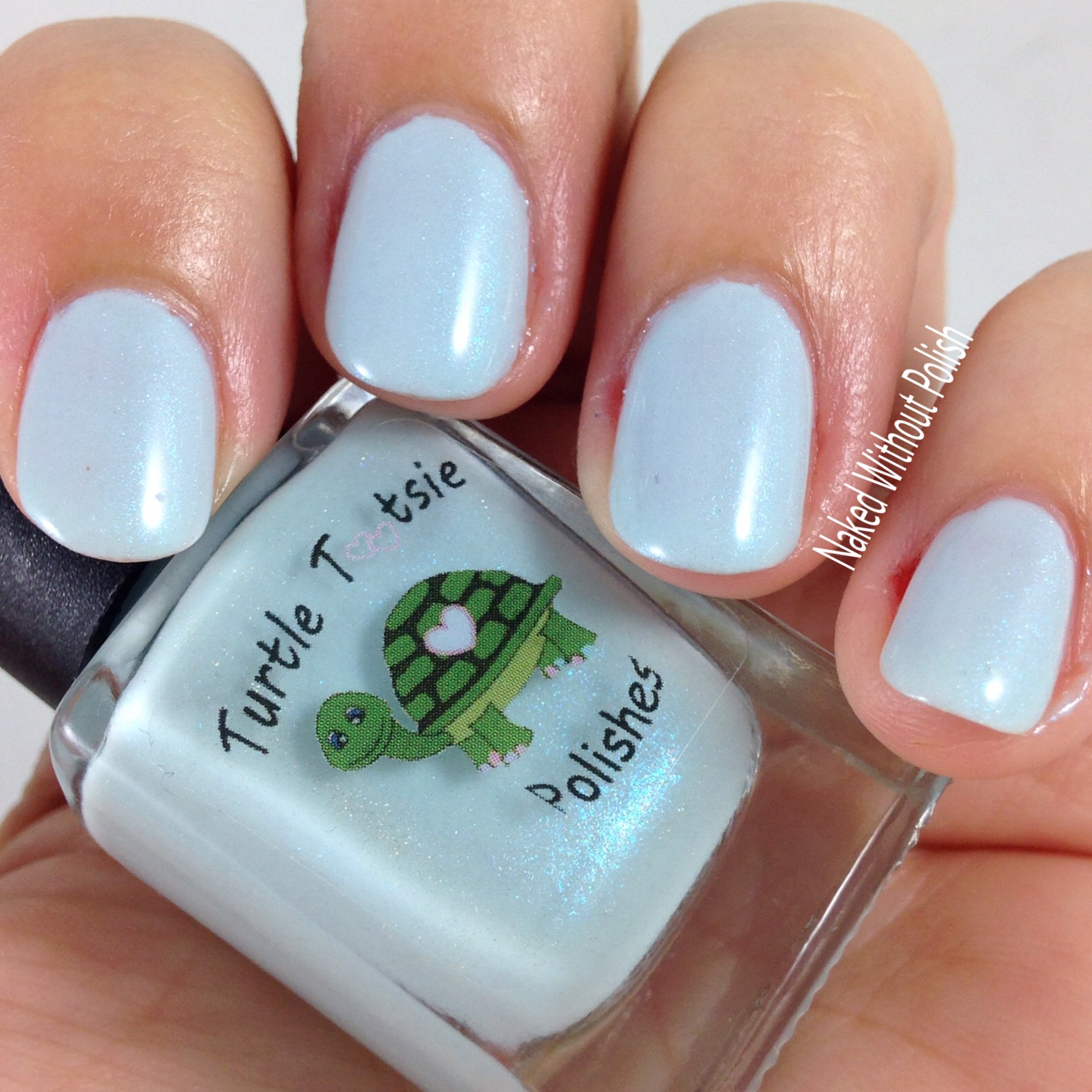 Turtle-Tootsie-Polishes-Immersion-6