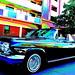 Impala Fever Dream