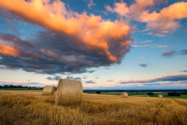 Harvest Time, Fujifilm X-T2, XF10-24mmF4 R OIS