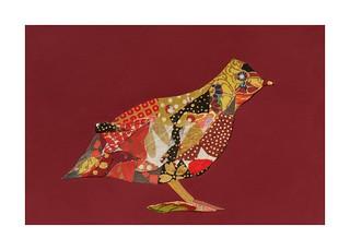 Bird #18