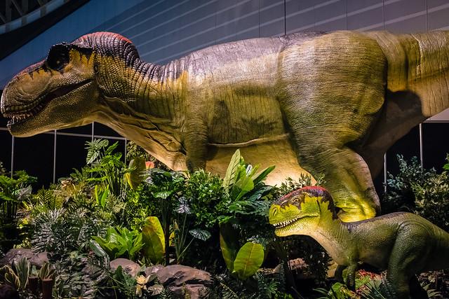 散策 [みなとみらい] : ヨコハマ恐竜展2017に行ってきた。