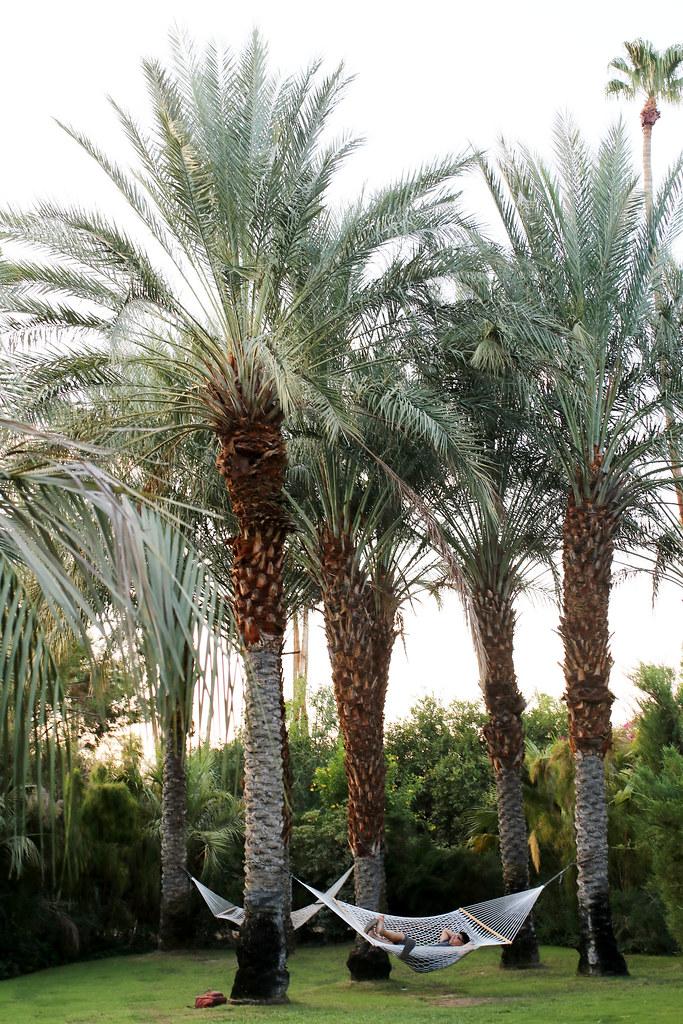 palm springs 2017