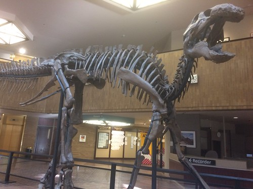 Dino in the County Building
