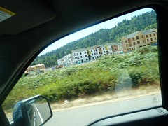 New Apartments in Issaquah