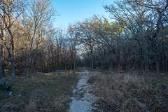 Trail - O.P. Schnabel Park - San Antonio - Texas - 29 January 2017