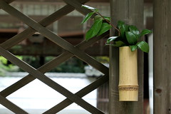Photo:Lattice panel along entrance to main sanctuary (本殿) at Niikawa Shrine (新川神社) By Greg Peterson in Japan