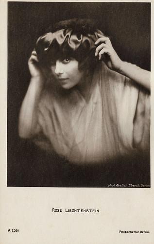 Rose Liechtenstein
