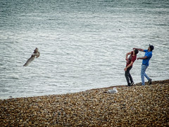 Throwing Stones into the Sea