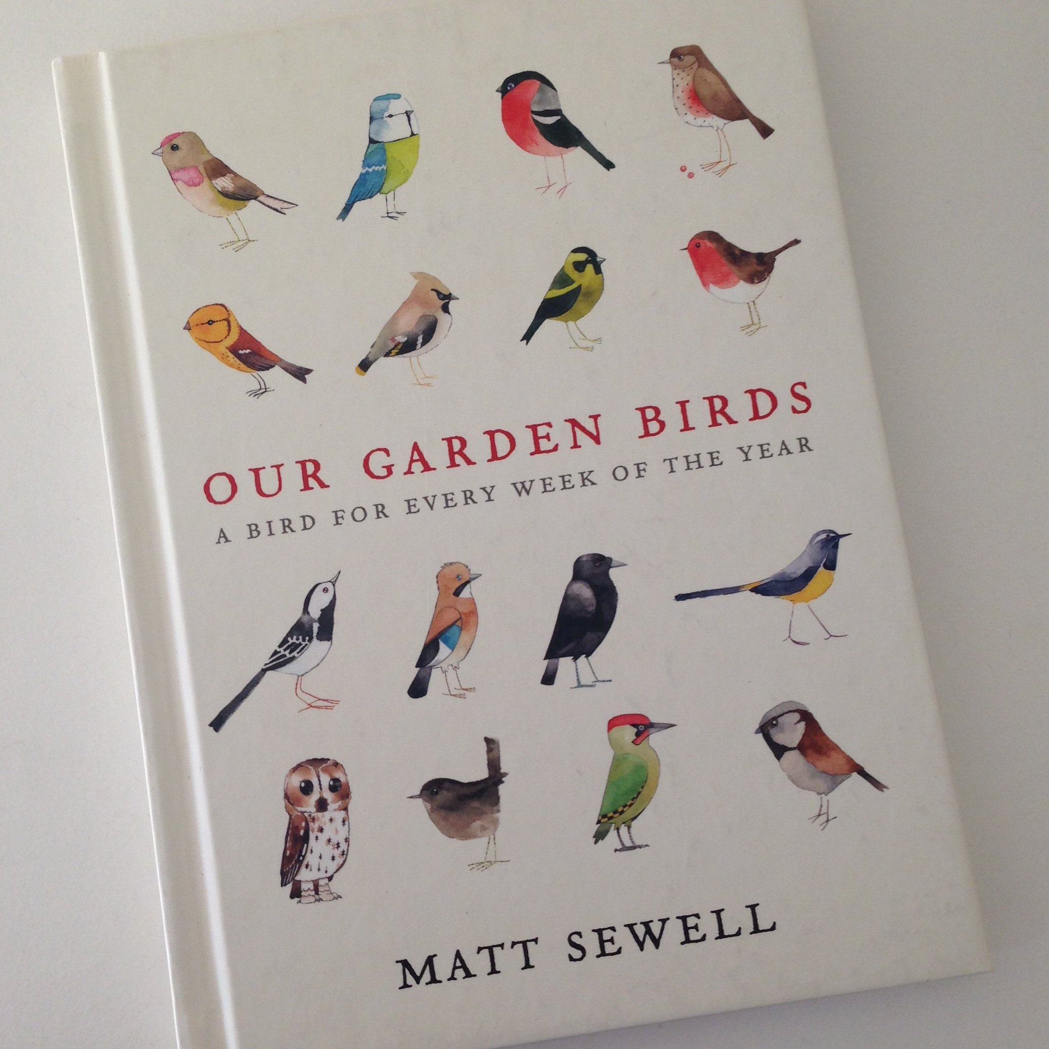 Matt Sewell garden birds swallow
