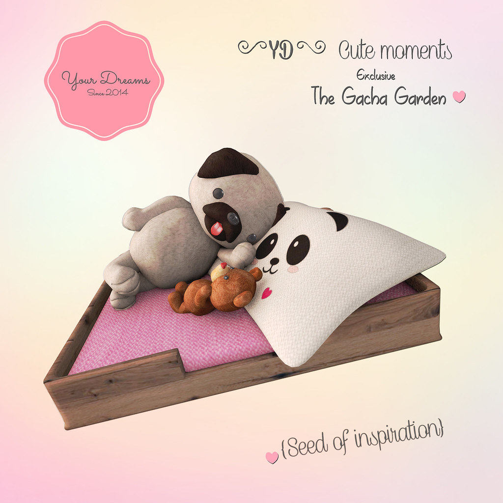 {YD}Cute moments ♥ Seed Of inspiration - SecondLifeHub.com