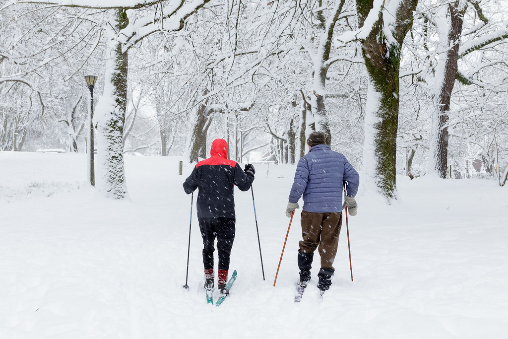 People ski on the snow-covered paths at Portland's Irving Park