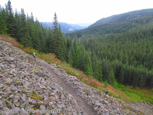 Switchbacks near thnale beginning of the Mazama Trail in Mt. Hood National Forest, Oregon