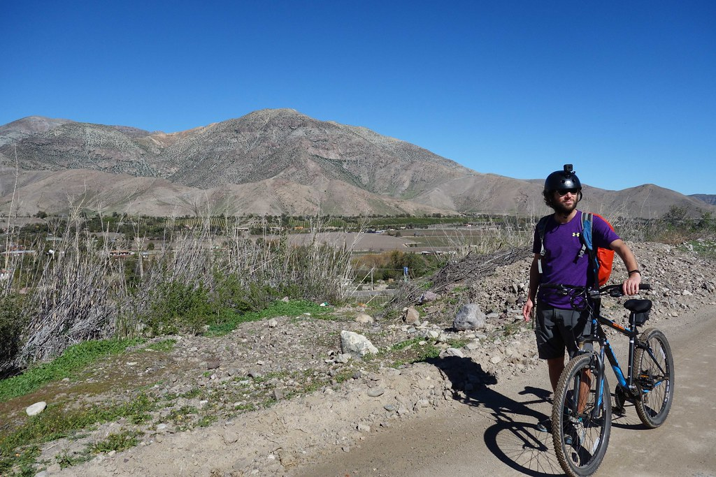 Vicuna - Valle de Elqui - Flo