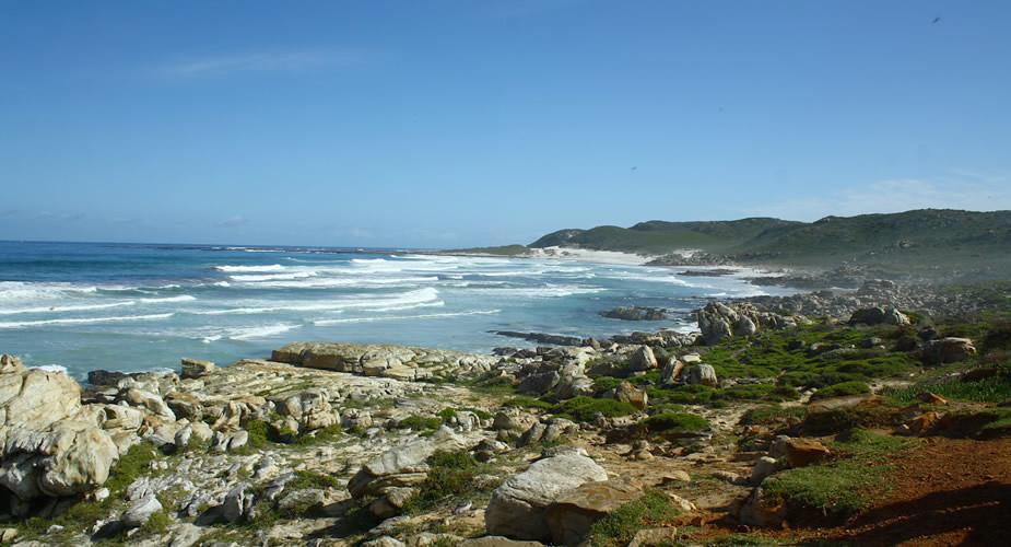 Dagtrip Kaap de Goede Hoop vanuit Kaapstad, Zuid-Afrika | Mooistestedentrips.nl