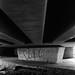 FILM - Under the bridge in black and white