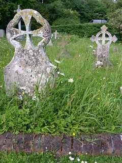 Pushing up the daisies in Luddesdown churchyard