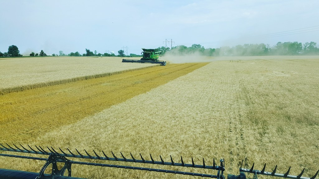 Schemper 2017 - North Dakota Wheat Harvest
