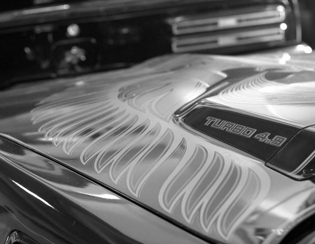 Thunder Chicken Mono, Pentax K-5, smc PENTAX-FA 77mm F1.8 Limited