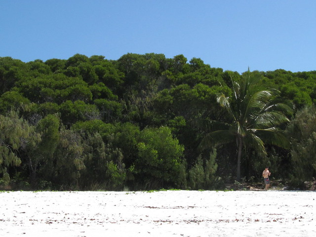 Whitehaven Beach, Canon POWERSHOT SX150 IS