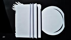 White Book_Nicoleta Faina_87