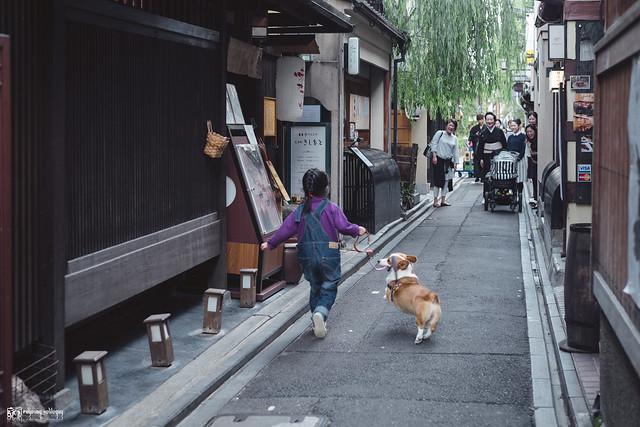 十年,京都四季 | 卷三 | 古都日常 | 22