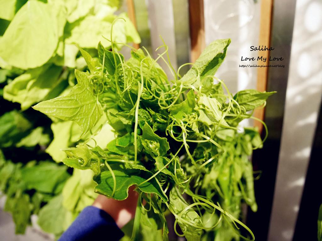 台北東區國父紀念館站附近素食餐廳推薦VEGE CREEK 蔬河 (16)