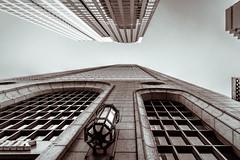 Looking Up in Dallas