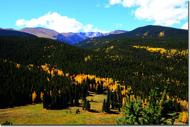 Fall colors, Mount Evans Scenic Byway, Colorado (43)