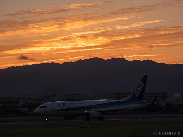 Itami Airport 2017.9.28 (17) ANA's B737-800